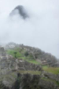 الموجات فوق الصوتية للكشف عن سرطان الثدي