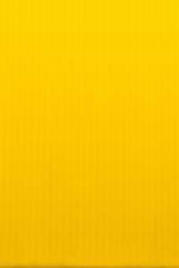 صورة المشاهير سكرتيرات الحرة